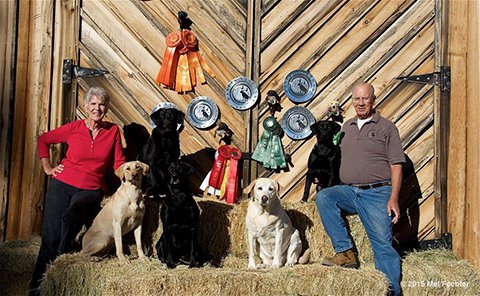 Grouse Creek's Labrador Retrievers